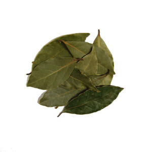 bay-leaf_large
